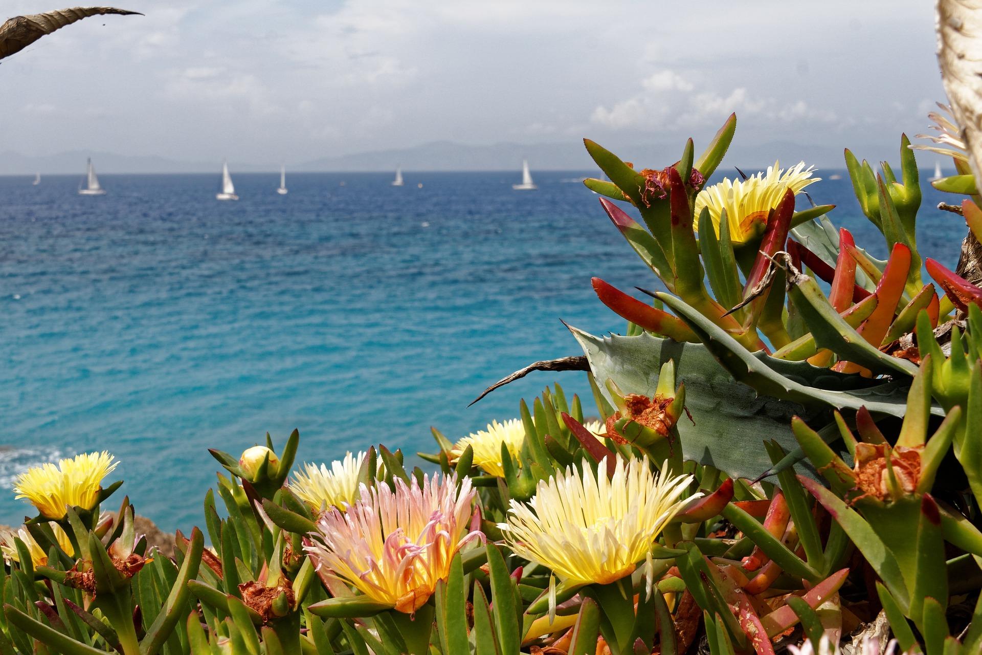 8 dagen op het griekse eiland rhodos voor maar 199 incl vlucht en goed hotel - Eiland maaltijd ...